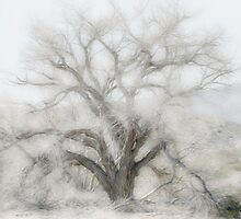 Desert Tree In Soft Oils by CarolM