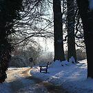 A Winter Walk by Dorothy Thomson