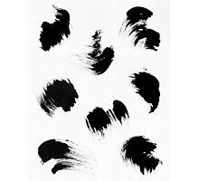 brush Photographic Print