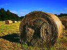 Hay bales in Summer , Bristol, UK by buttonpresser