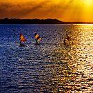 Sunset Sailing by Jim Haley