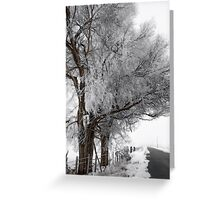 Holiday roads... Greeting Card