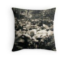 Rememberance Of Walking  Throw Pillow