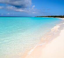 Half Moon Key Bahamas by Carl LaCasse