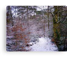 Winter Wonderland, Upton Woods, Poole Canvas Print