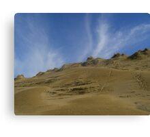 dune in june Canvas Print