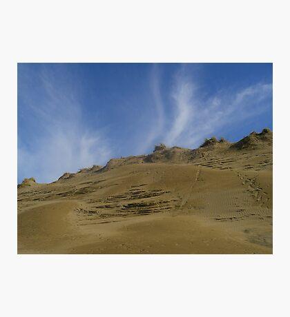 dune in june Photographic Print