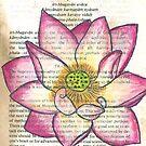 Hindu Lotus II by Alexandra Felgate