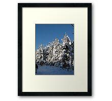 winter wonderland national trust formby Framed Print