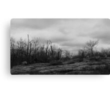Desolate Mountain Canvas Print