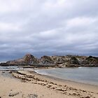 Gorilla Bay - South Coast NSW by truearts