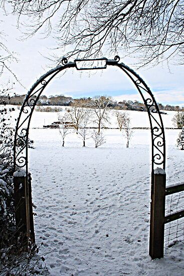 Gate to Narnia by Dave Godden