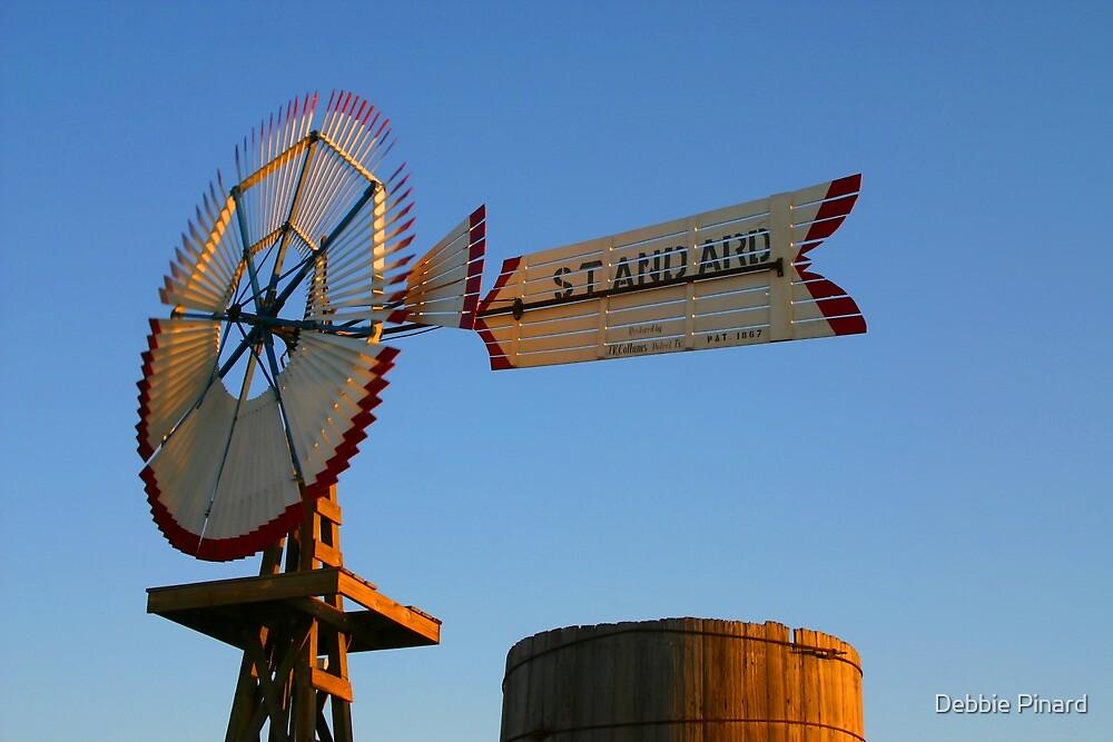 The Rodeo - San Antonio Texas by Debbie Pinard