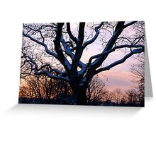 Snowy sunset scene Greeting Card