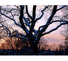 Snowy sunset scene Photographic Print