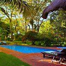 Karen Blixen Resort in Nairobi, KENYA by Atanas NASKO