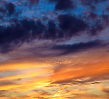 Painted Sunset by SRowe Art