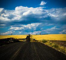 road less taken by Kristin Nelson