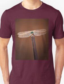 Dragon Perching T-Shirt