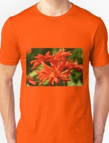 Summer Blooms, Warm Memories T-Shirt