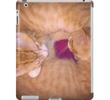 Circle of Kitten iPad Case/Skin