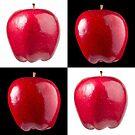 White & Black - Red Apples by Bryan Freeman