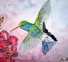 Desert Hummingbird by BenPotter