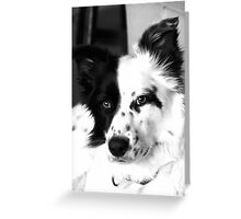 Make sure you get my good side! Greeting Card