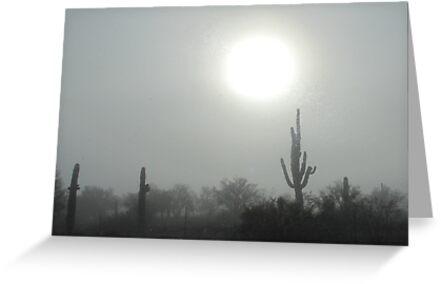 Fog in the Desert by Kimberly Chadwick