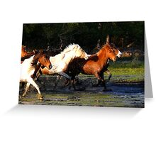 Pony Roundup Greeting Card