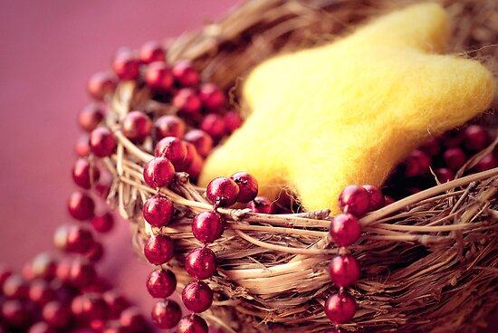 Joyeux Noel by Barbara Cortili