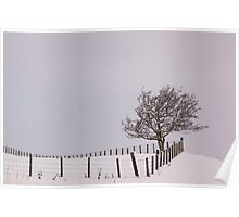 A Fence And A Tree Poster