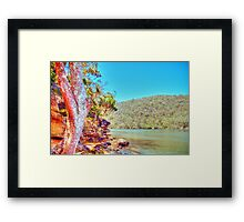 Bobbin Head, NSW, November 2010 Framed Print