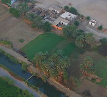 Egyptian Countryside from on HIgh by Laurel Talabere