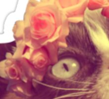 Grumpy cat - flower crown Sticker