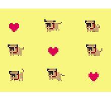 Pixel pug Photographic Print