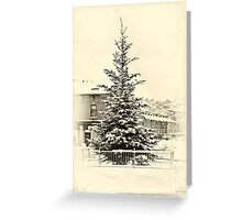Little tree Greeting Card