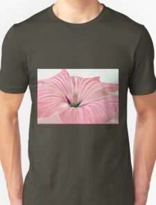 Lavatera Blossom With Rain Drops T-Shirt