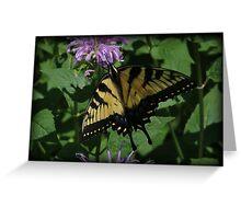 Swallowtail July Greeting Card