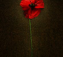 Remembrance by Country  Pursuits