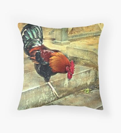"""Fine Lunch ...Thank You Madam...."" Throw Pillow"