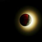 Up all night... Winter Solstice Lunar Eclipse Dec. 21, 2010 by NatureGreeting Cards ©ccwri