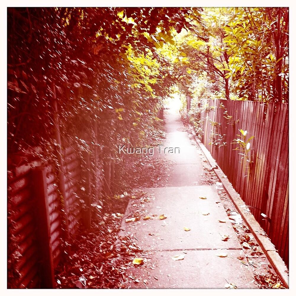 Alley Way by Kwang Tran