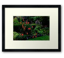 The red hot poker rules Framed Print