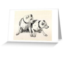 Two Bull Terriers Greeting Card