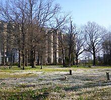African American Cemetery by WildestArt