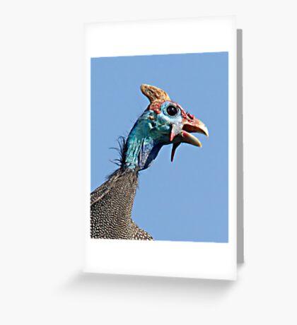 Helmeted Guinea Fowl Greeting Card