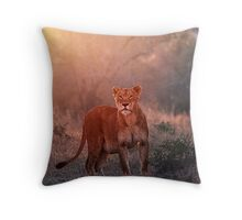 Searching For Cubs Throw Pillow