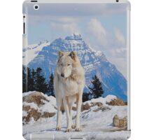 White Grey Wolf & Rocky Mountains Art  iPad Case/Skin