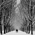 winter couple by LarsvandeGoor
